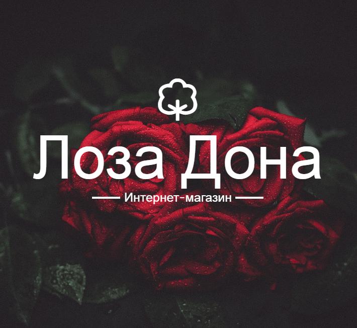 Магазин Лоза Дона
